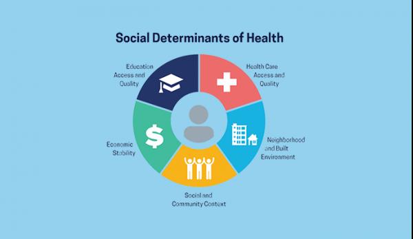 Social Determinants of Health - Fakuda Blog