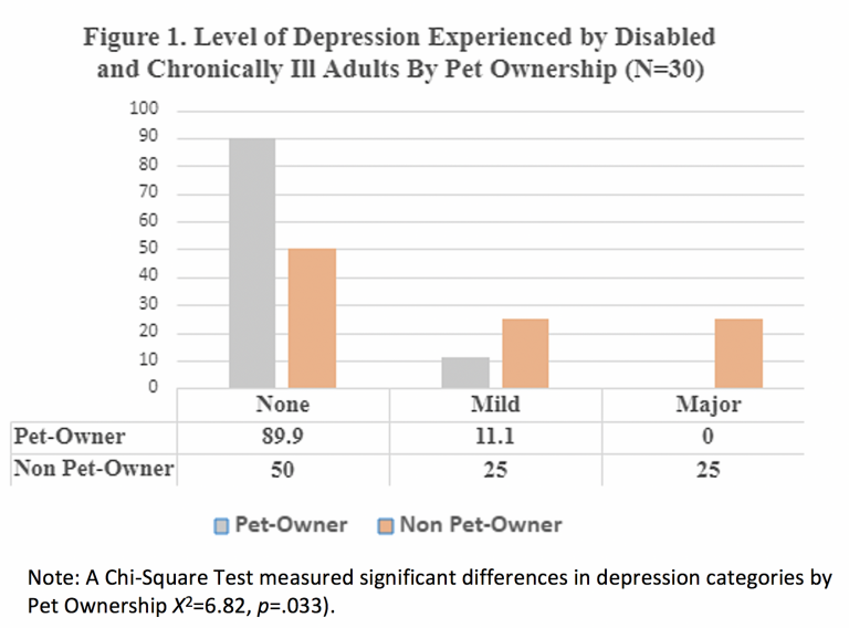 Figure 1. Level of Depression Experience by Disabled and Chronically Ill Adults by Pet Ownership (n=30)