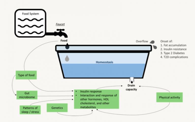 Figure 1: Bathtub Analogy