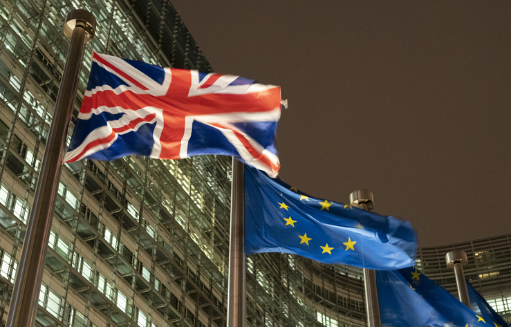 Edition 12 – Brexit and Health: A Tragedy of Errors