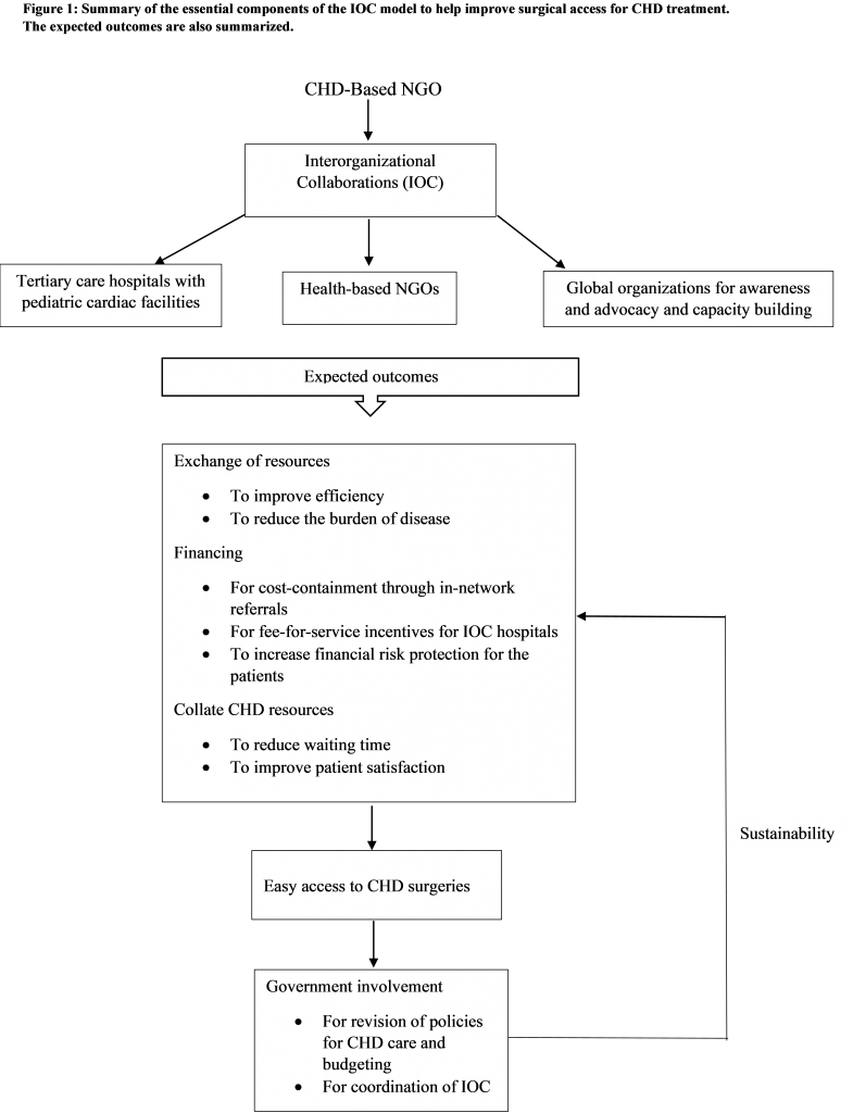 Interorganizational Collaborations and Improving Surgical Access to Pediatric Cardiac Care in Pakistan: A Non-Governmental Organization's Perspective